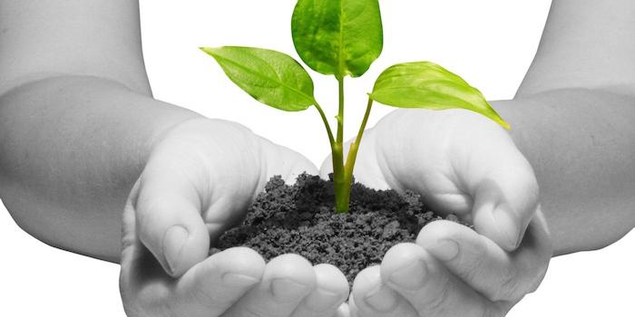 Eco-Entrepreneurs